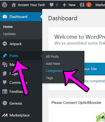 hover over posts, then click categories