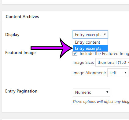 how to stop showing full post content in genesis wordpress archives