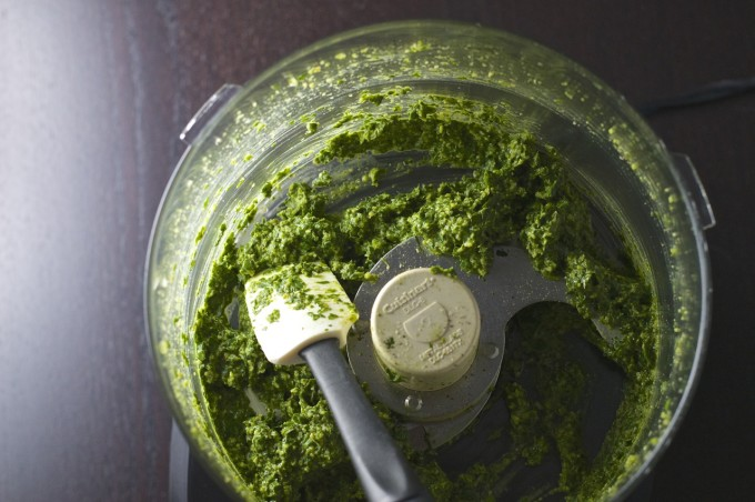 Tarragon Pesto Food Processor