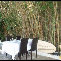Belek Kaptan Balık Restaurant- Antalya TV- Muhabir Rüya KÜrümoğlu (115)