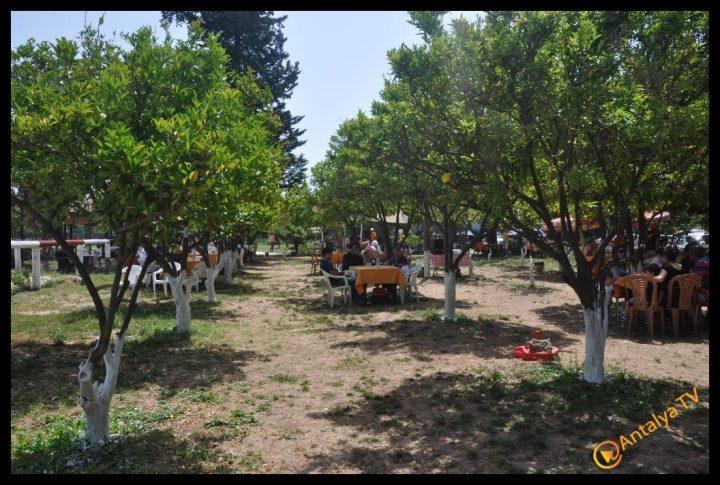 Nallı Bahçe  At Çiftliği Restaurant (65)