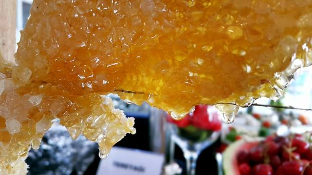 Antalya kahvaltı fiyatları 0242 228 8900 Blue Garden Hotel Antalya Şehir İçi Otelleri (16)
