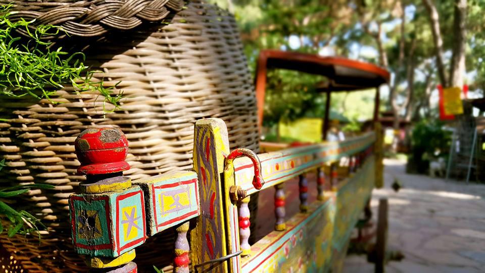 Antalya Köy Kahvaltısı – 0242 4394747 – Çakırlar Gzöleme Bazlama Paşa Kır Bahçesi Çakirlar (28)