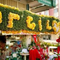 antalya çiçek sipariş 0242 3453210 çiçek gönderme orgil çiçekçilik (5)