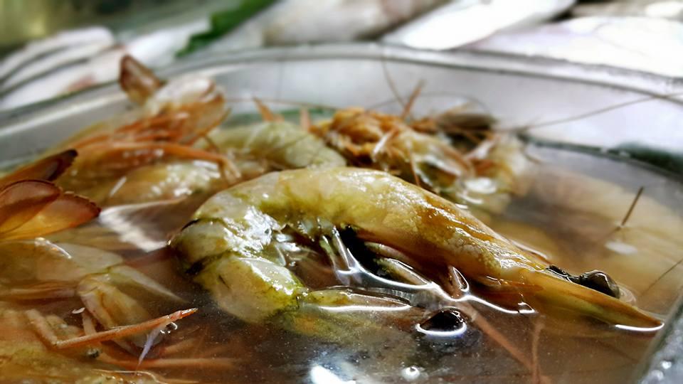 Antalya Deniz Ürünleri Restoranı 0242 248 4142 antalyada balık restoranı antalyada balık nerde yenir antalya balık evi antalya calı müzikli restoran (12)
