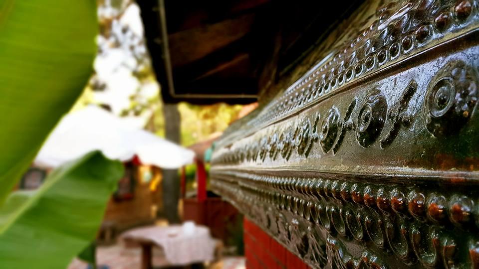 Antalya Köy Kahvaltısı – 0242 4394747 – Çakırlar Gzöleme Bazlama Paşa Kır Bahçesi Çakirlar (16)