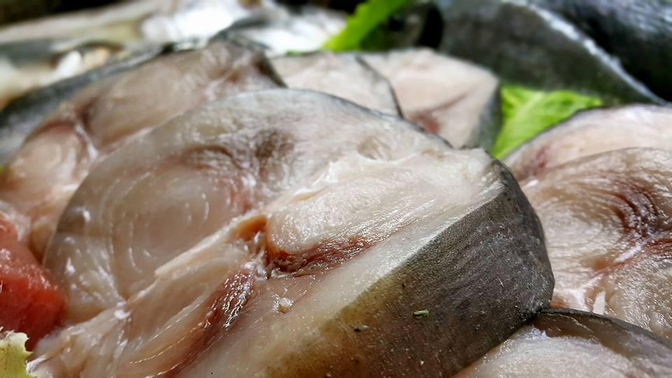 Ekici Restaurant – 0242 2484142 antalya kaleiçi yat limanı mekanlar restaurant bar balık evi (10)