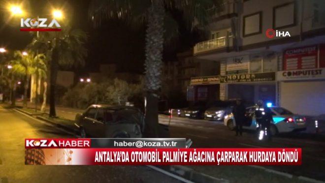ANTALYA'DA OTOMOBİL PALMİYE AĞACINA ÇARPARAK HURDAYA DÖNDÜ