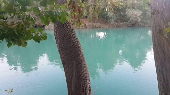 Melas Garden Restaurant Manavgat - 0532 435 3653