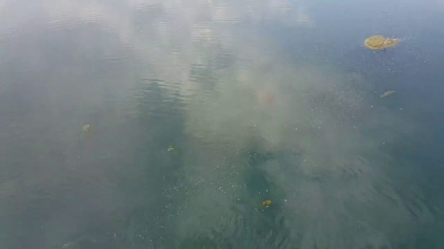 Antalya Yeni Boğaçayı Projesi - Boğaçayı su yüzeyi - Konyaaltı Gezi Tatil