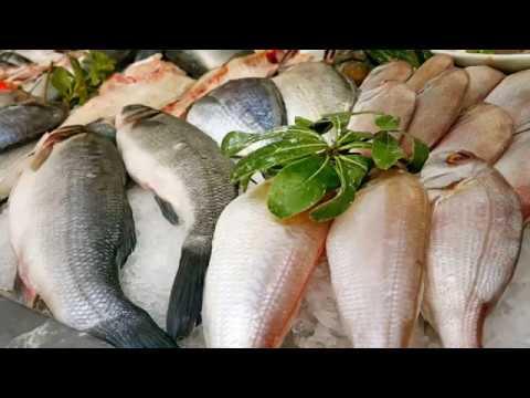 Balık Tezgahı Süsleme – Ekici Balık Restaurant Kaleiçi Yat Limanı Antalya