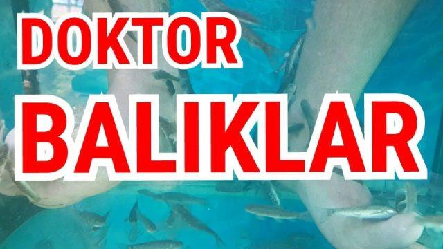 Doktor Balıklar - Balıklarla Tedavi Alanya Dimçayı Cennet Vadisi Piknik