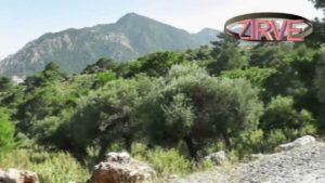 Zirve Alabalık - Hisarçandır Antalya
