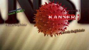 Bağırsak Kanseri Tedavisi Antalya  Lokman Hekim İsmail Talaşçı