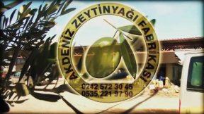 Akdeniz Zeytinyağı Fabrikası - Gazipaşa Alanya Antalya Zeytinyağı Fabrikası