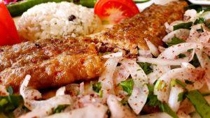 Adana Kebap - HM Cağ Kebap Restaurant
