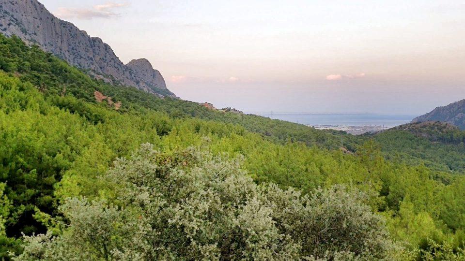 Antalya Altınyaka Deniz Manzarası Çam Ormanları_22