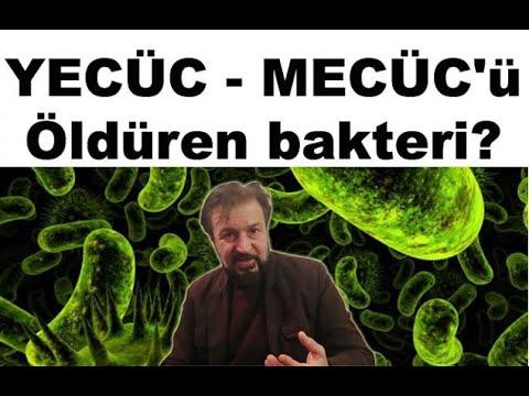 YECÜC - MECÜC'ü öldüren bakteri?