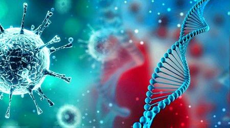 Evrimde zararlı mutasyonlar neden elenmedi ?