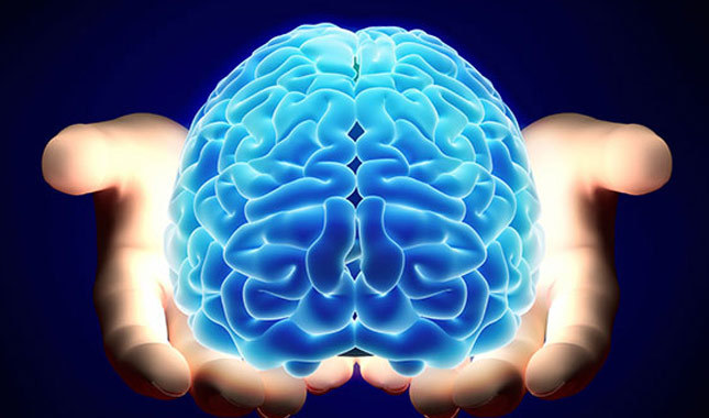 Is the Qur'an a science book -human brain – mind – intelligence – are there miracles in the Qur'an