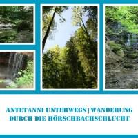 Wasserfälle Hörschbachtal | antetanni unterwegs