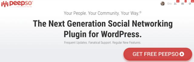 wordpress user plugin manager
