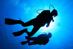 LearnToDive