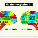 Στα άδυτα του ανδρικού μυαλού