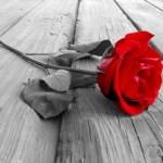 Όταν κρατιόμαστε σε ό,τι μας φθείρει Το παράδειγμα του έρωτα