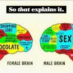 Ο εγκέφαλός μας είναι ο εαυτός μας