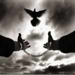 Νίκος Καζαντζάκης: Ερχόμαστε από μια σκοτεινή άβυσσο