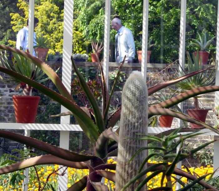 Succulent Mydleton House cropped