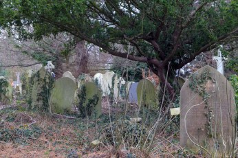 blog new southgate cemetery dec 2018 3