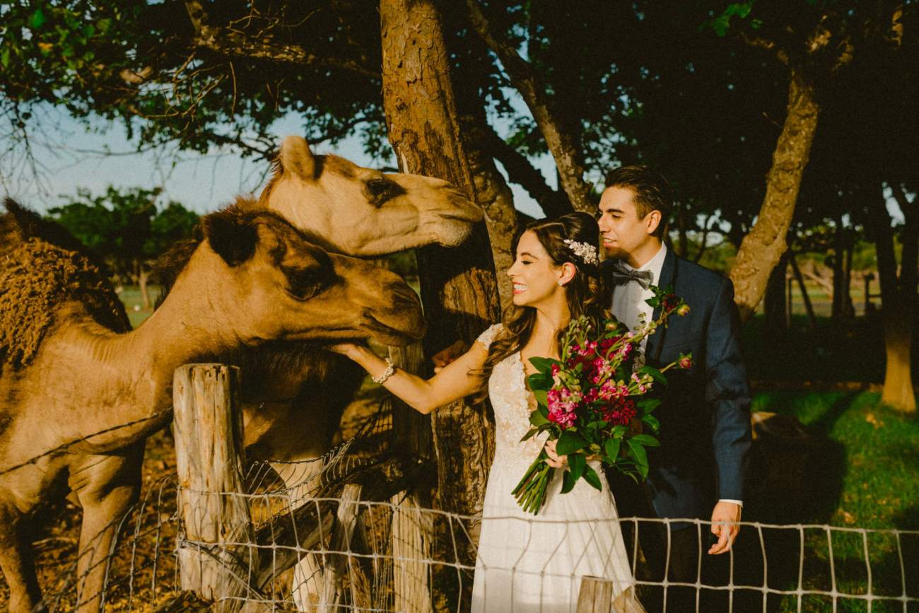 Ranch Wedding Inspiration