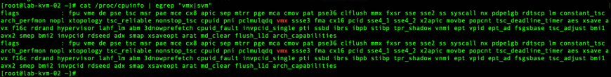 KVM on vSphere ESXi