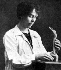 Edith Maryon, 1872-1924