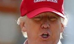 Bestiarium. Donald Trump