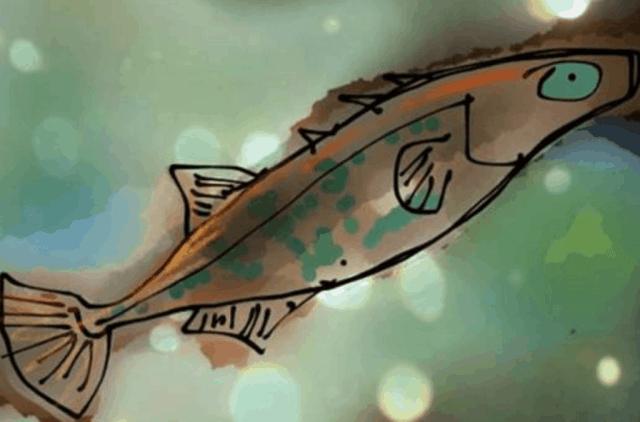 digital line drawing of a small stickleback fish