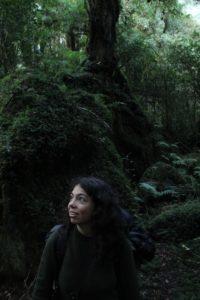 Tagua Reserve Chile