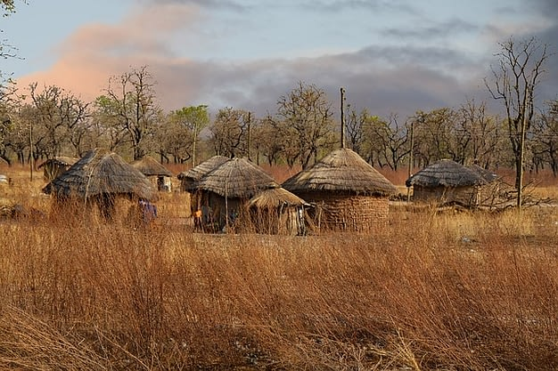 Several grass huts.
