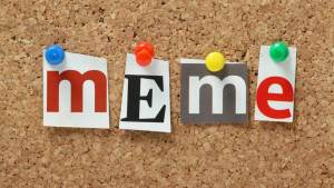 "The word ""meme"" on a bulletin board"