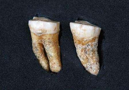 Two Neandertal Molars from 63,400 years ago