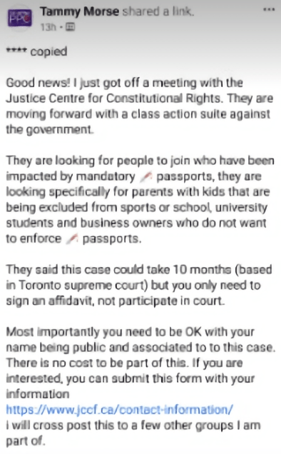canada-vaccine-constitutional-rights-unvaccinated-protest-supreme-court-toronto-passports-card-enforcements