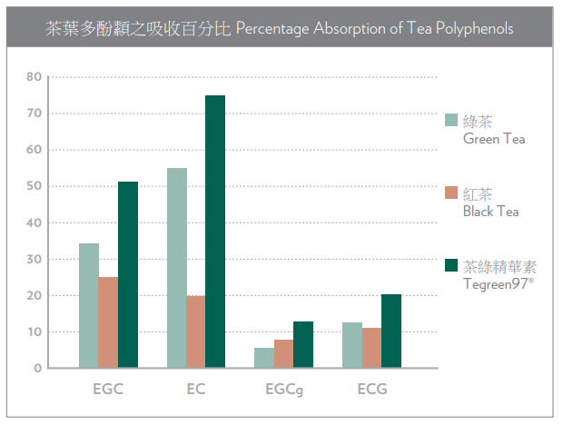 Percentage Absorption of Tea Polyphenols