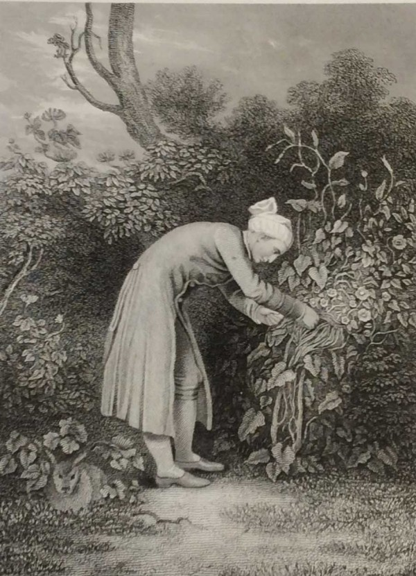 Cowper in His Garden, antique print, Victorian, an engraving from circa 1880 after the original painting by G H Smith.