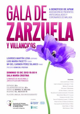 APAM-Zarzuela 2013-Cartel sT