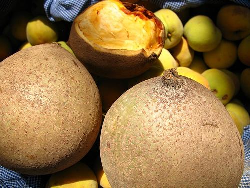 Guatemalan Fruit: Mamey