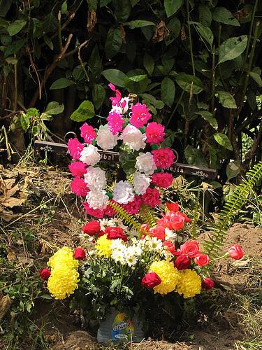 Flowers for the dead by Rudy Girón
