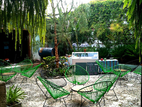 Green chair for a green patio and garden by Rudy Girón
