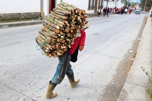 Rudy Giron: AntiguaDailyPhoto.com &emdash; Typical wood log load carrier